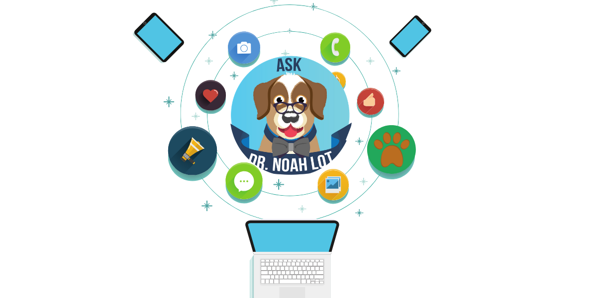 Ask Dr. Noah Lot - How to increase your veterinary specialty practice social media following