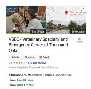 Local SEO veterinary