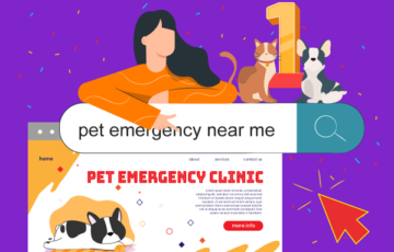 Image: How to Get Your Veterinary Practice to Rank on Page 1 of Google